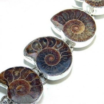 Bracelet with Ammonite Gemstones